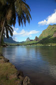 Landscape polynesia — Stock Photo