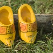 Dutch wooden shoes — Stock Photo #2305849
