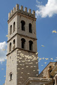 Tower of basilica in Assisi — Stock Photo