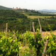 Vineyard in Chianti — Stock Photo #2330038