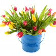 Royalty-Free Stock Photo: Colorful tulips in spotted vase