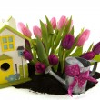 Tulips and bird house - Stock Photo