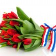 Dutch tulips — Stock Photo