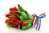 Dutch tulips — Stock Photo