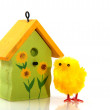 Stock Photo: Easter chick with birdhouse