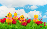 Decoration grass with flowers — Stock Photo