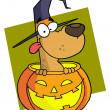 Cartoon character halloween dog — Stock Photo