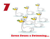 Number Seven And Text By Swimming Swans — Stock Photo