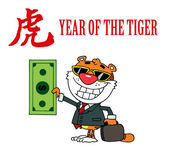 Character Animal Happy Tiger — Stock Photo