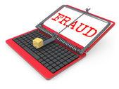 Internet Fraud — Stock Photo