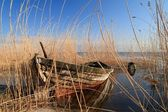 Old boat in reed — Stock Photo