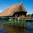 Foto Stock: Thatched house