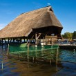 Stockfoto: Thatched house