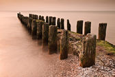 Groyne in the evening light — Stock Photo