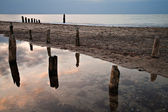 Old Groyne — Stock Photo