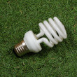 Foto Stock: Energy saving lamp