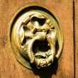Stock Photo: Door handle