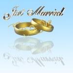 recién casados con anillos — Foto de Stock