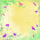 Colourful butterflies — Stock Photo