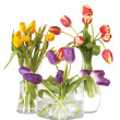 Tulips in vases with clipping path — Stock Photo