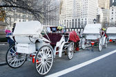Carriage rides in New York — Stock Photo