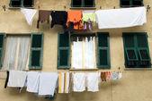 Stesi ad asciugare — Foto Stock