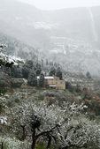 Tuscan Winter Scene — Stock Photo