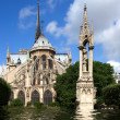 A Flooded Notre Dame Cathedral — Stock Photo #2233110