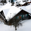 Stock Photo: Chalet in the Snow