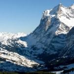 Grindelwald - Switzerland — Stock Photo #2234296