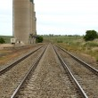 Trackside Silos — Stock Photo #2234697