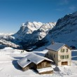 Kleine Scheidegg - Chalets - Stock Photo