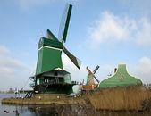 Dutch Windmills — Stockfoto