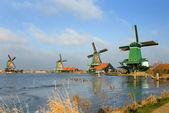 Dutch Windmills — Stock Photo