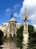 A Flooded Notre Dame Cathedral — Stock Photo