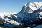 Grindelwald - Suíça — Fotografia Stock