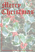 Feliz natal — Foto Stock
