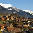 Swiss Village — Stock Photo #2242411