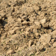 Freshly ploughed field — Stock Photo #2343856
