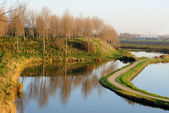 View over polder in Sluis — Stock Photo