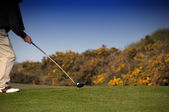 Play golf — Stock Photo