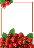 Ripe sweet cherries Border — Stock Photo