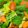 Stock Photo: Mixed Salad