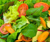 Gemengde salade — Stockfoto