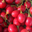 Stock Photo: Tamarillo