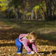 Stock Photo: Dear girl plays with leaves