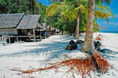 Bamboo island 2 — Stock Photo