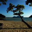 Phi Phi beach — Stock Photo