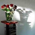 Roses — Stock Photo #2240547