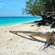 Bamboo island — Stock Photo